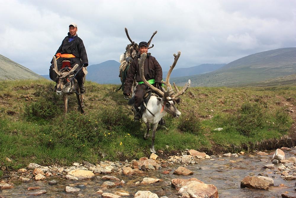 Tsaatan reindeer breeders riding on reindeer