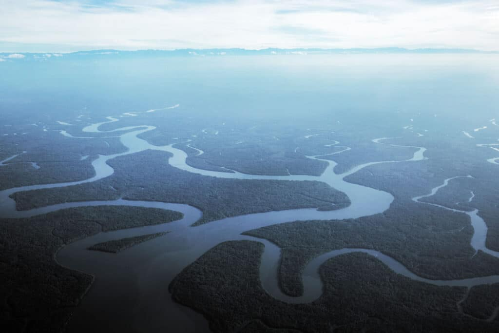 Papua jungle and rivers from above