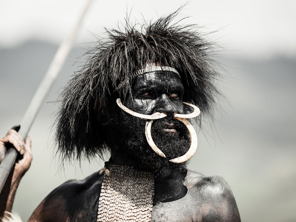 dani tribe man portrait with tusk nose piercing and spear