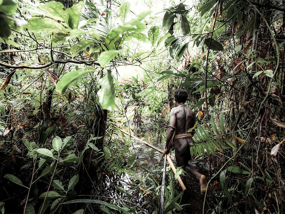 korowai tribe man back view walking through forest