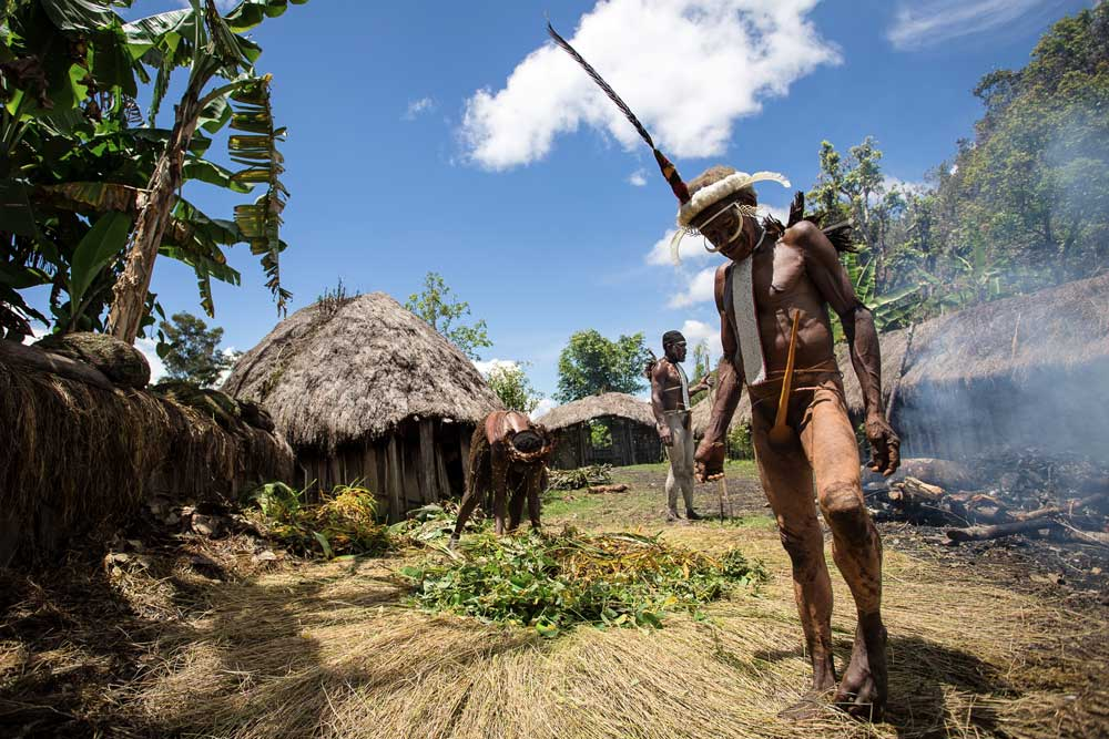 man from dani tribe standing on grass inside village