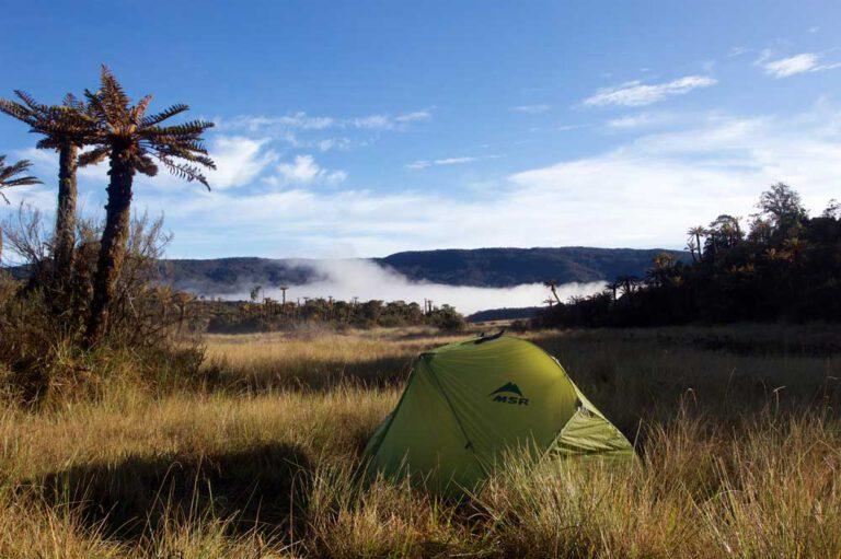 Tent camp on the way to Mt. Trikora