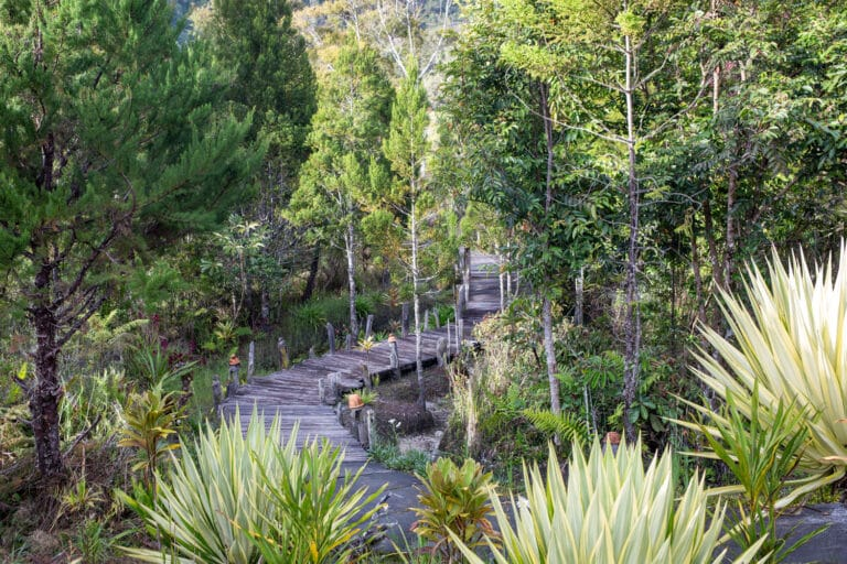 Inner garden at The Baliem Valley Resort